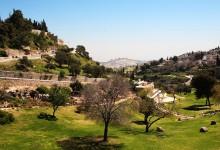 Kolory Izraela